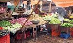 Tarım sektörü Atmanirbhar Bharat'ın temelidir: PM Modi