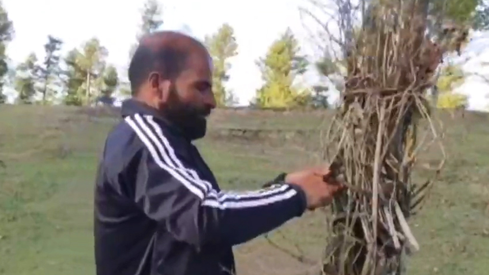 J&K: Meet the unsung hero silently doing his bit to save nature