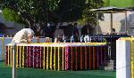 India and its neighborhood celebrate 151st birth anniversary of Mahatma Gandhi