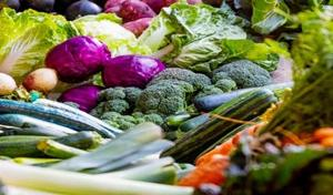 Demand surges for organic food as the first organic market is introduced in Srinagar