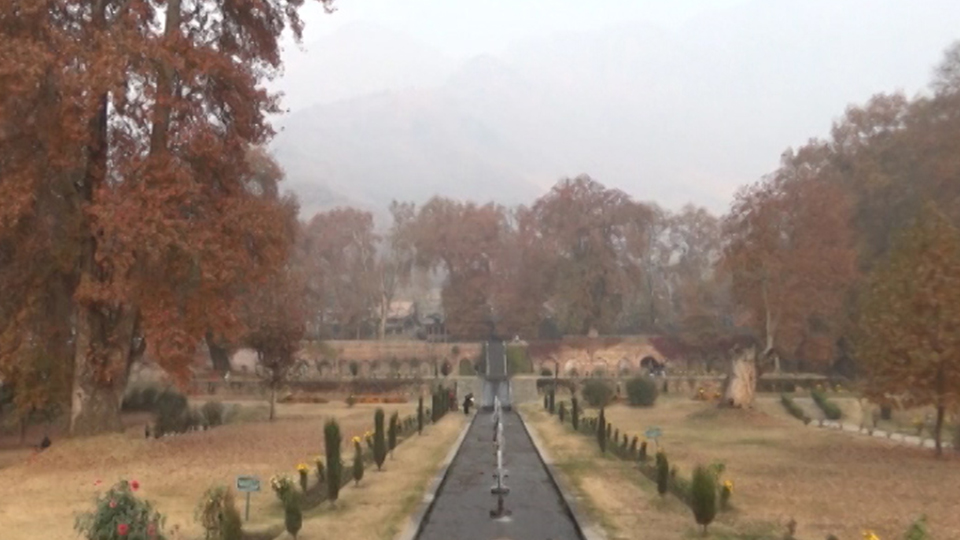 Tourists throng the Valley to enjoy autumn in Kashmir